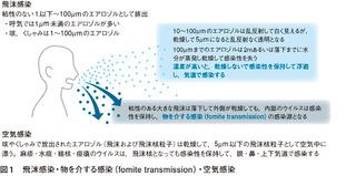5004_033_01.jpg